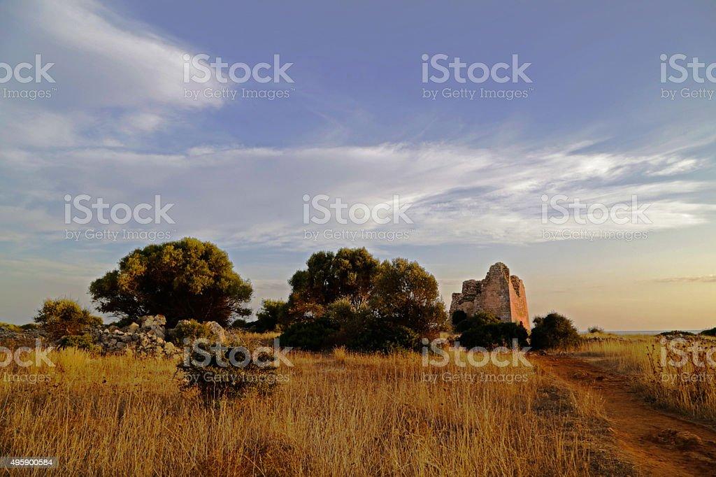 Salento - Torre Uluzzo (Nardò) royalty-free stock photo