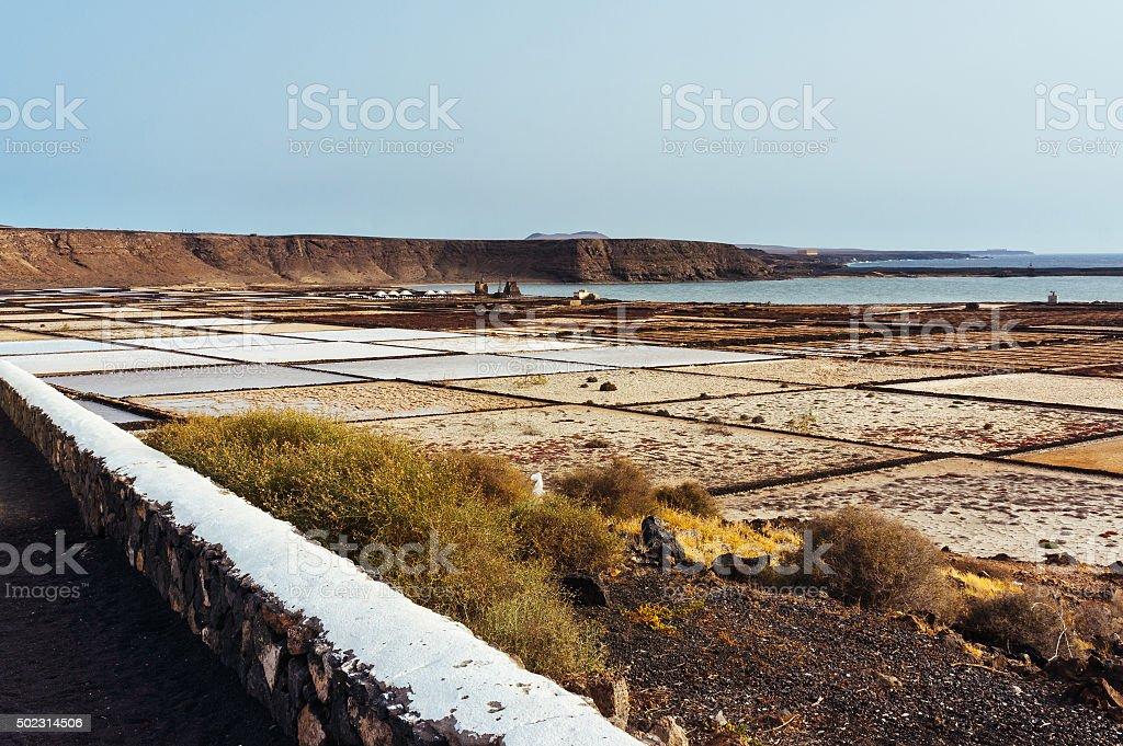 Salinas of Lanzarote stock photo