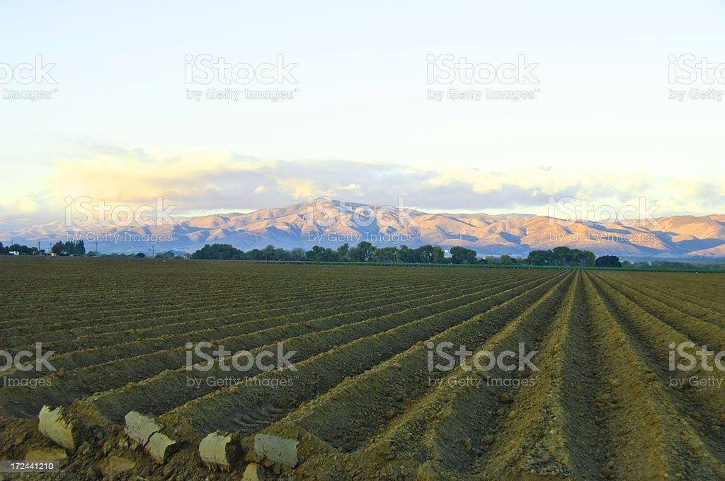 Salinas Valley stock photo