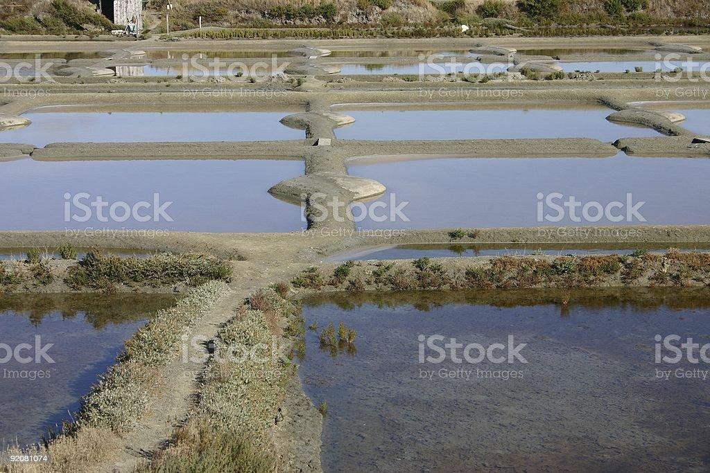 saline marshs royalty-free stock photo