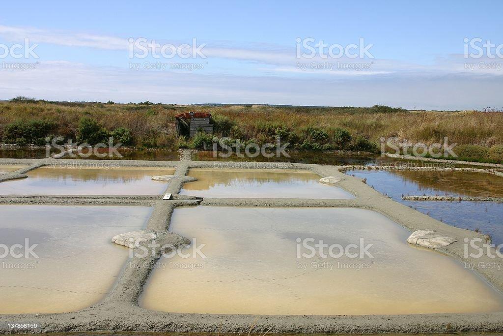 salines marshes stock photo