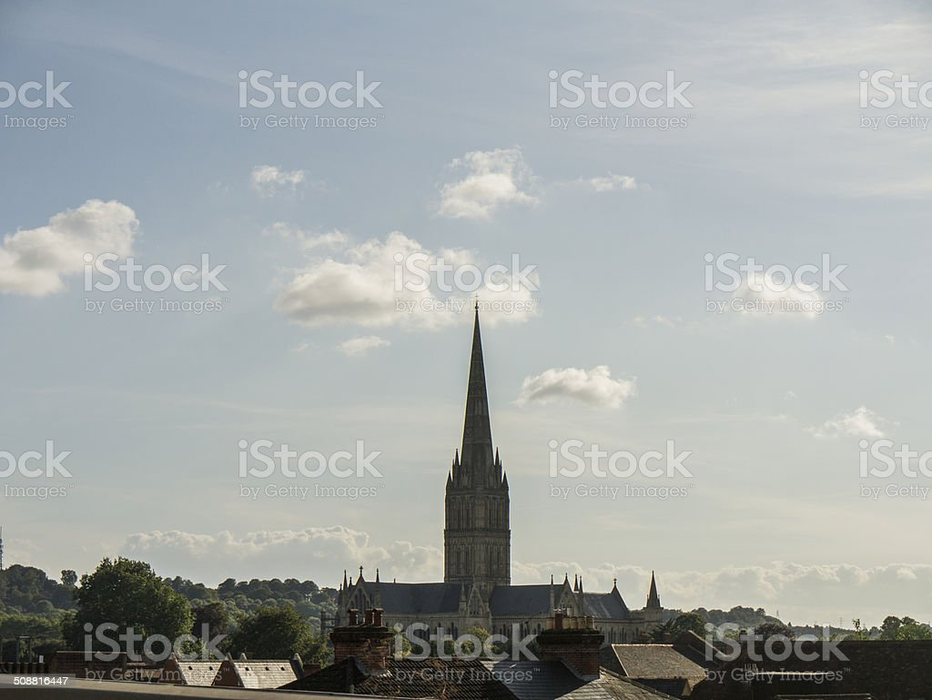 Salisbury Cathedral in Context stock photo