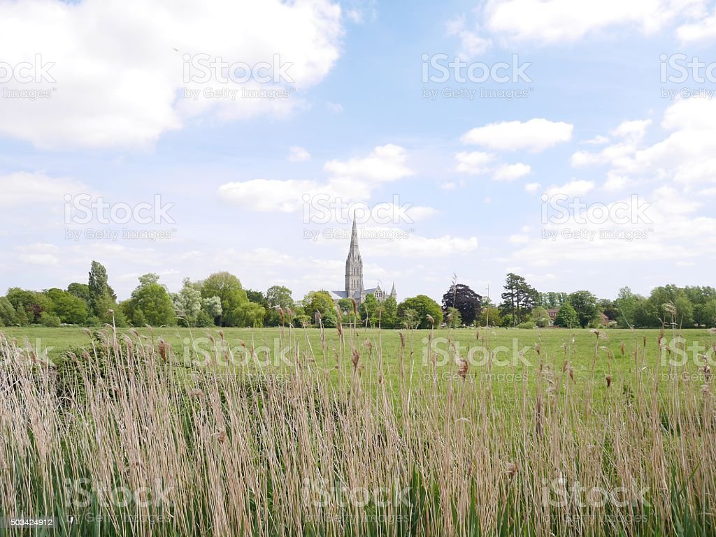Salisbury Cathedral viewed across Harnham water meadows stock photo