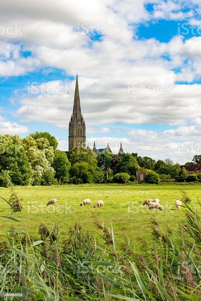 Salisbury, UK with Wiltshire countryside stock photo