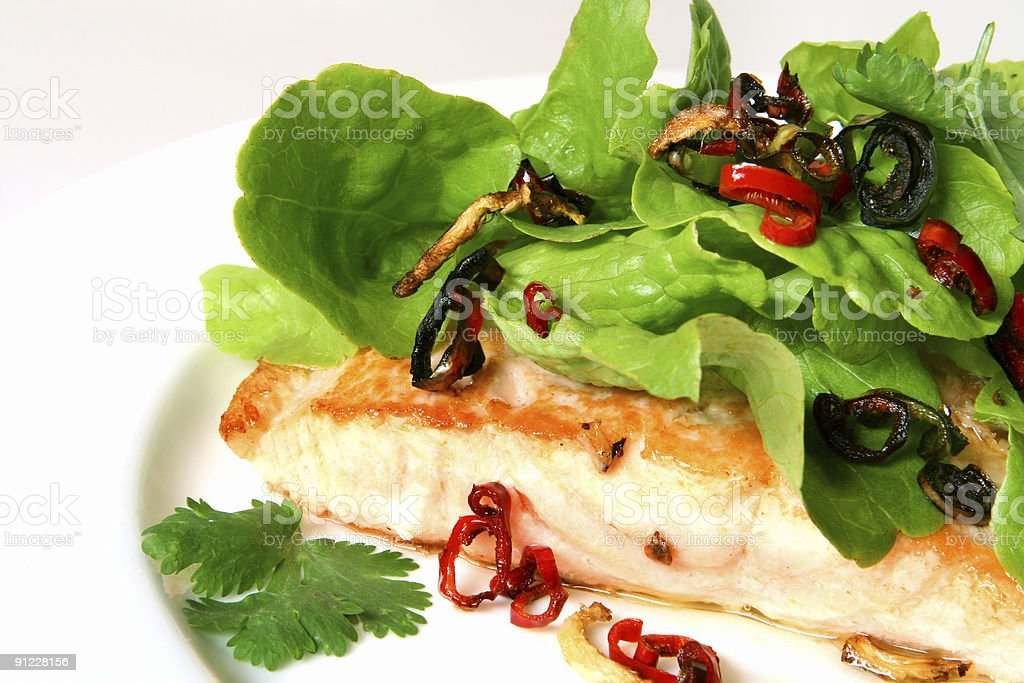 Salmon and Salad royalty-free stock photo