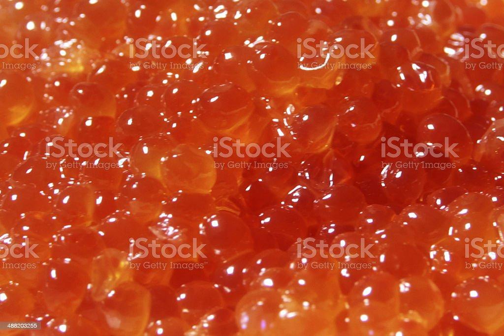 salmon caviar royalty-free stock photo