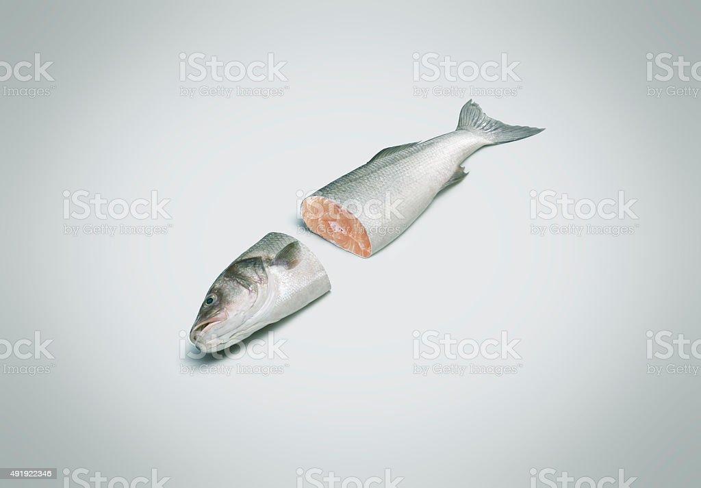 Salmon cut in half stock photo