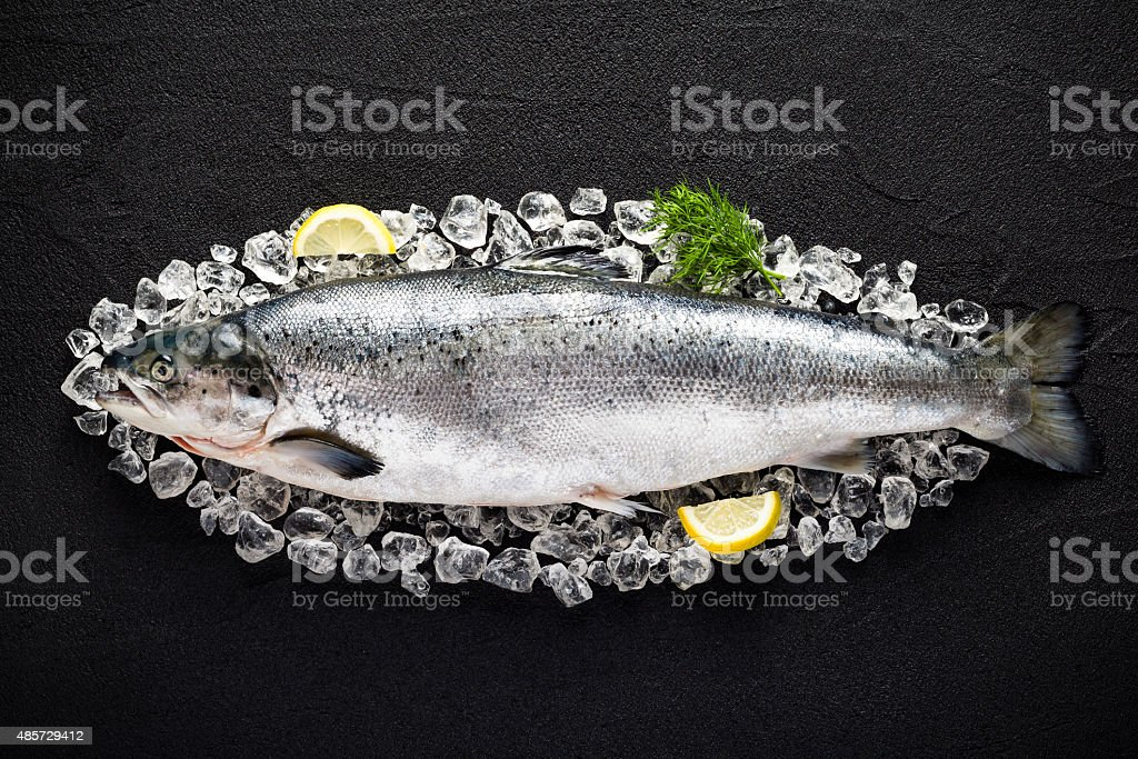 Salmon fish and ingredients on ice on a black table stock photo