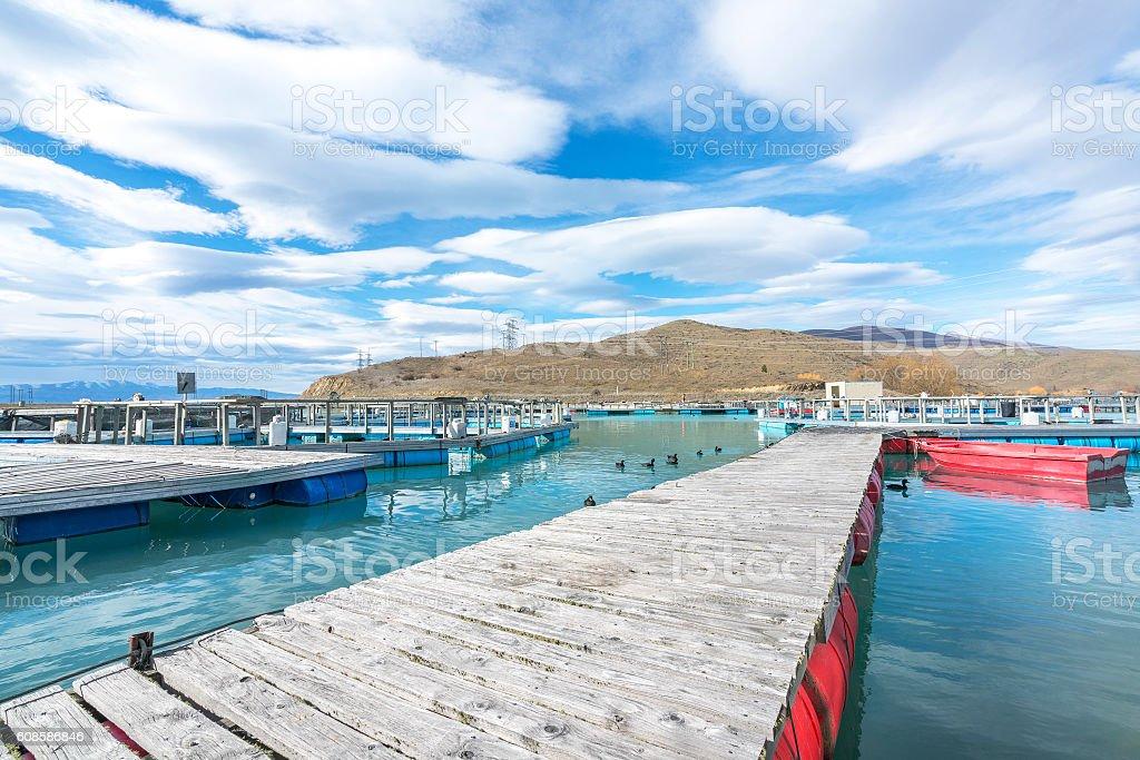 Salmon Fish farm floating stock photo