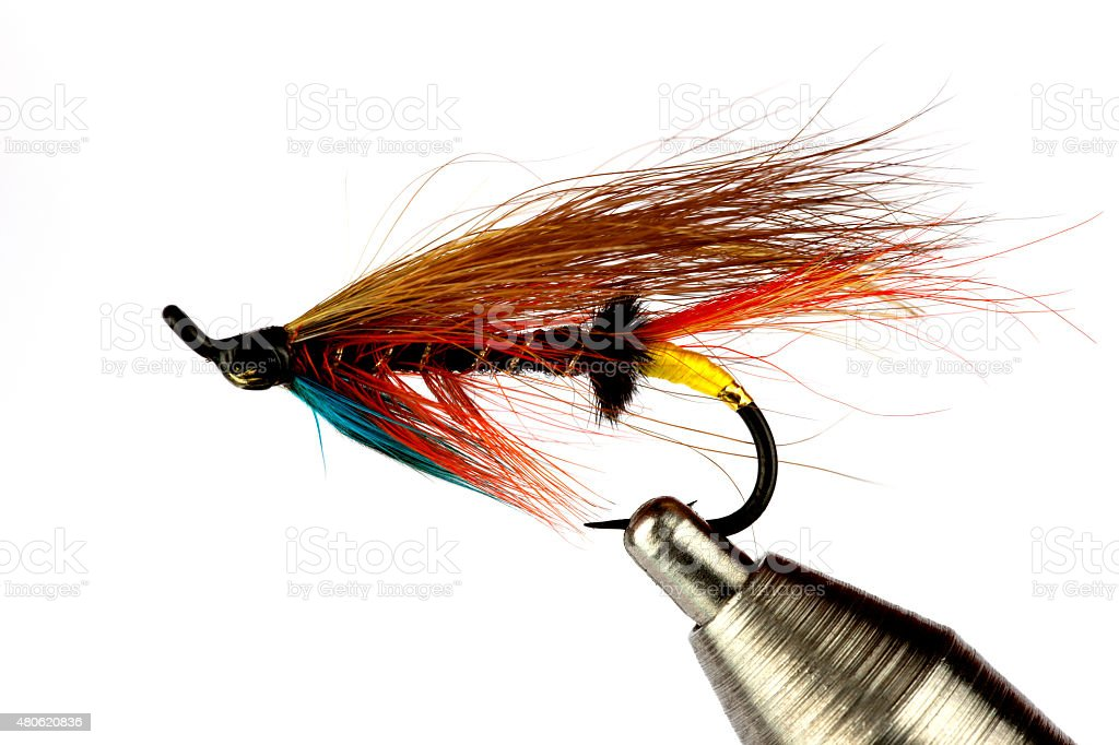 Salmon Fishing Fly on Fly Tying Vise Isolated on White stock photo