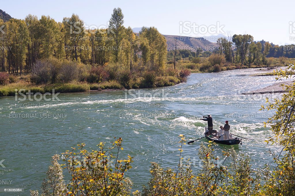 Salmon fishing stock photo