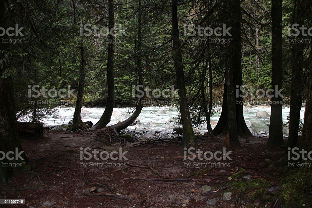 Salmon fishing stream stock photo