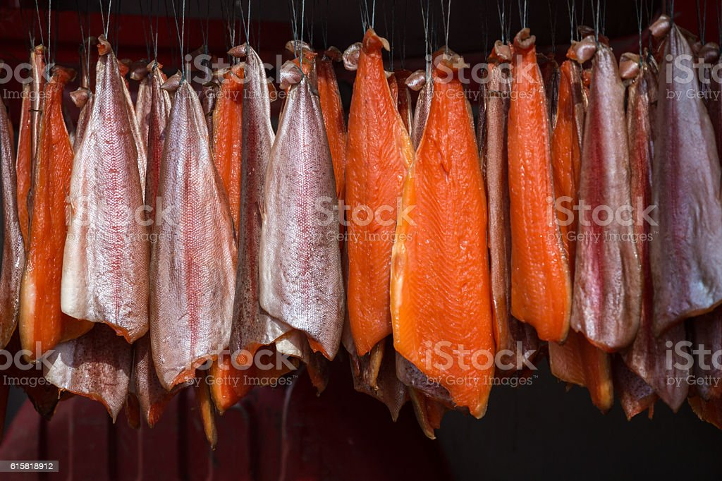 Salmon hanging in an ordered pattern for smoking stock photo