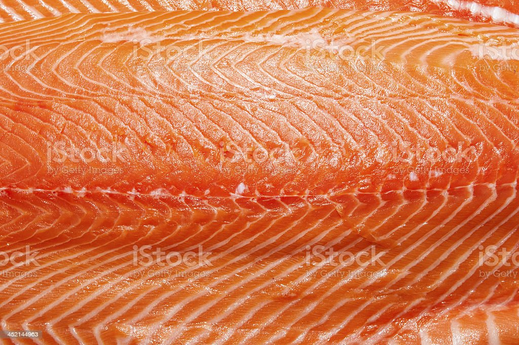 salmon meat royalty-free stock photo