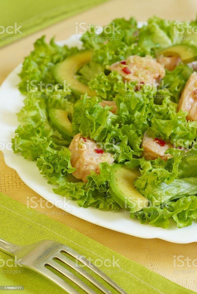 Salmon salad royalty-free stock photo