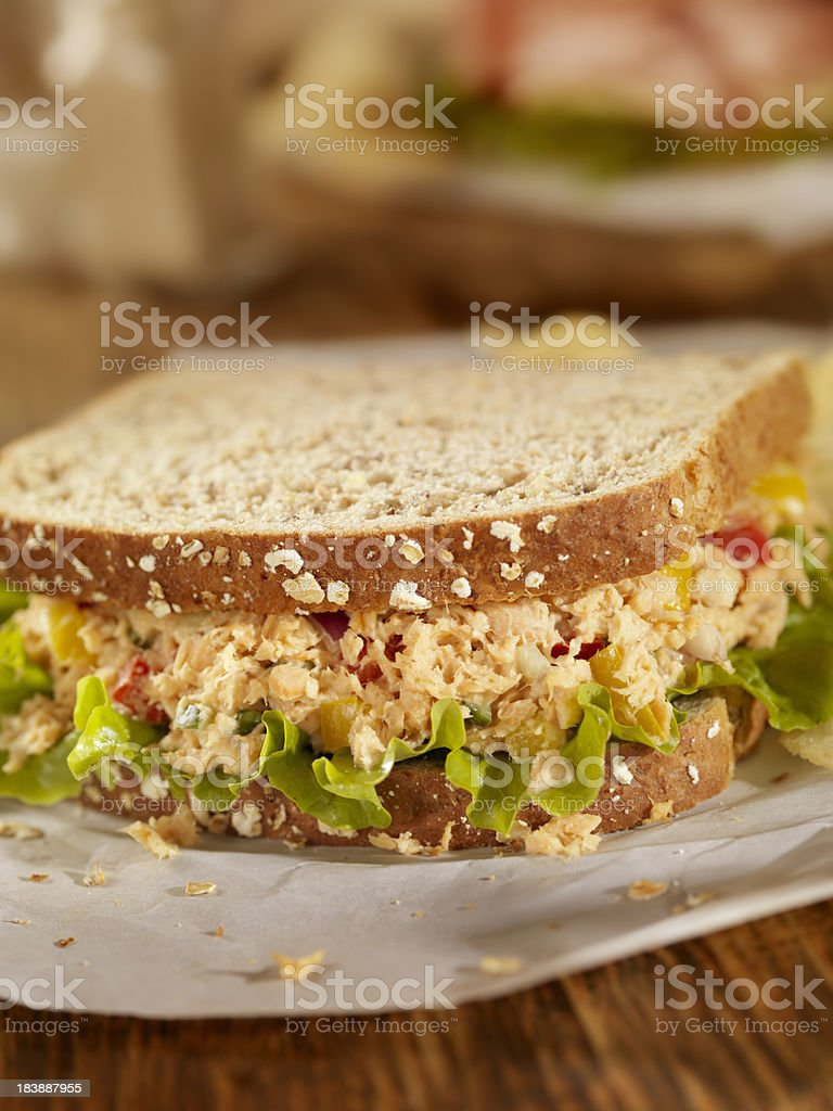 Salmon Salad Sandwich royalty-free stock photo