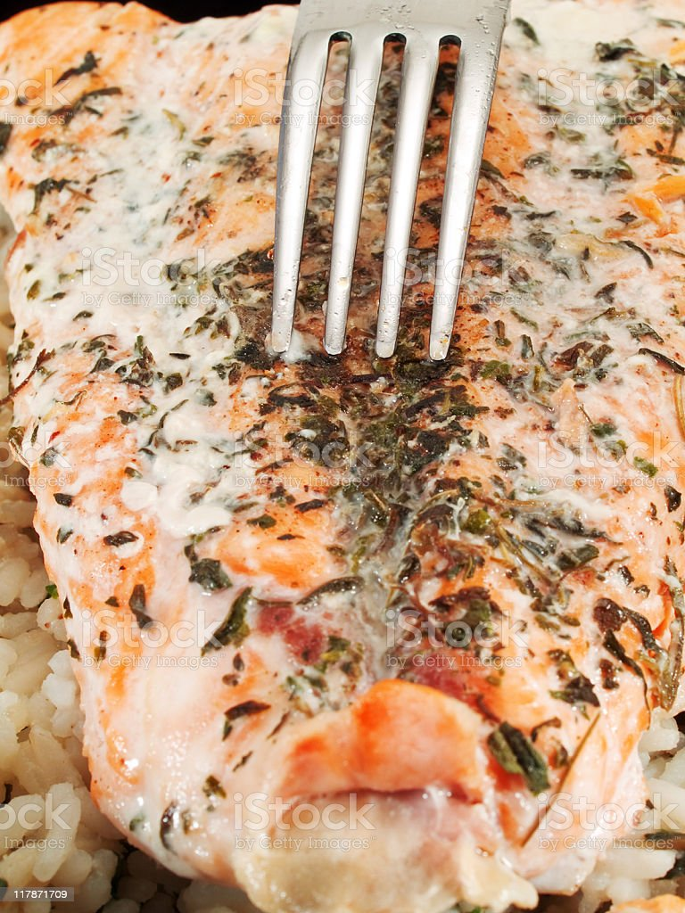 Salmon with rice royalty-free stock photo