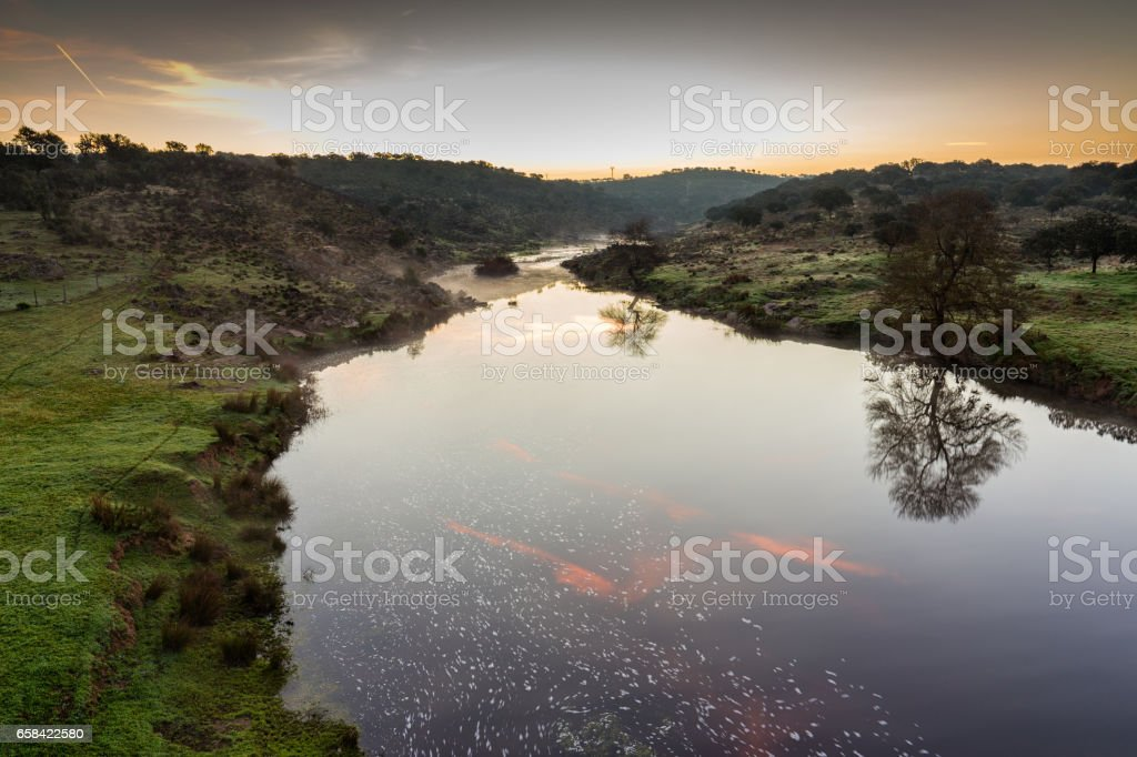 Salor river stock photo