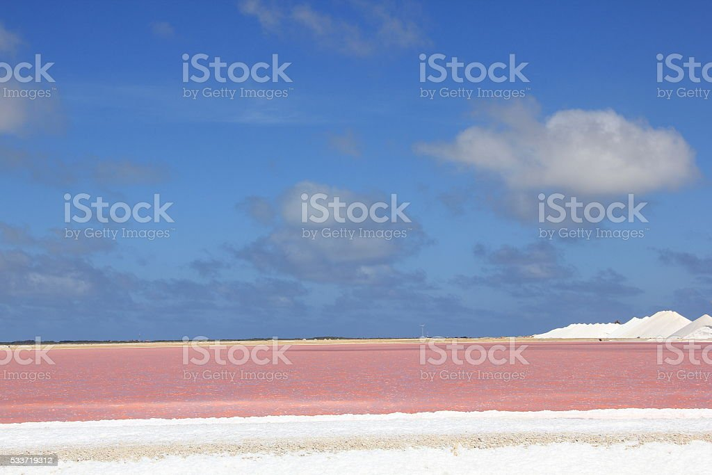Salt and Pink water stock photo