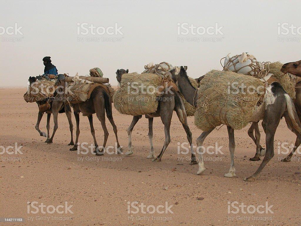 Salt caravan royalty-free stock photo