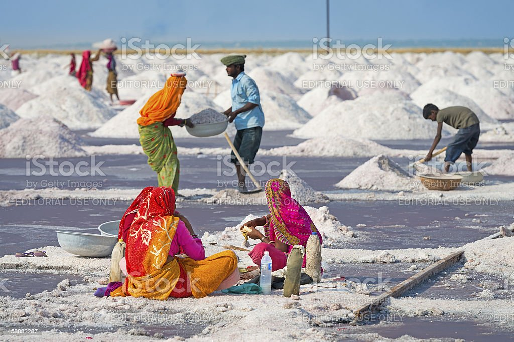 Salt collecting farm, India royalty-free stock photo
