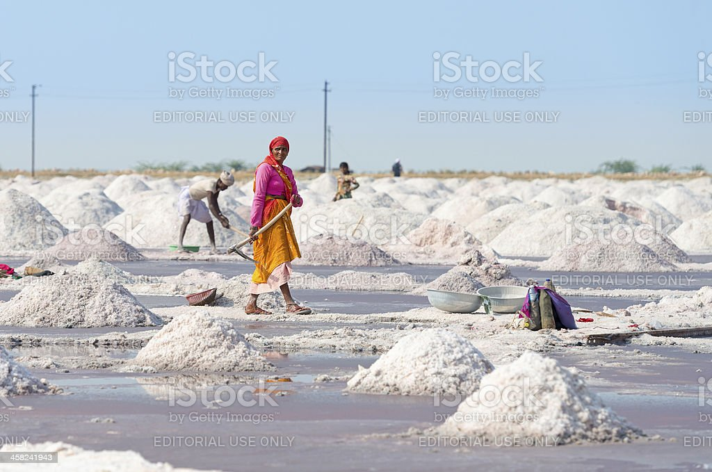 Salt collecting in traditional farm, India stock photo