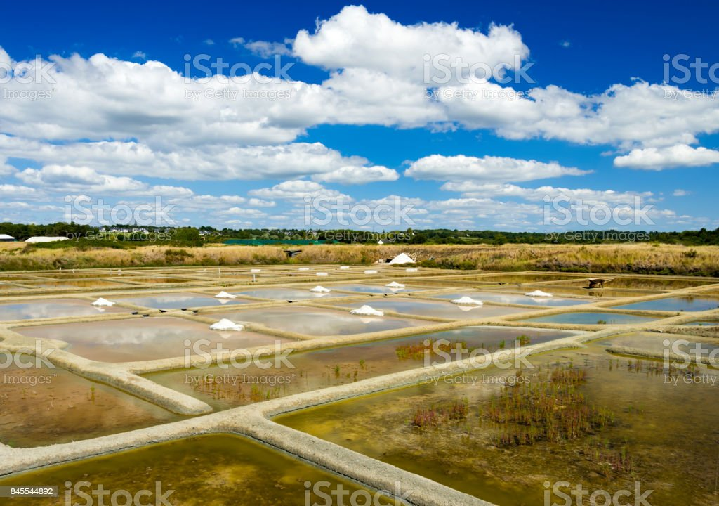 Salt farming production in Brittany, France stock photo
