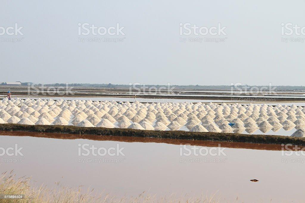 Salt field at Samut Sakhon, Thailand stock photo