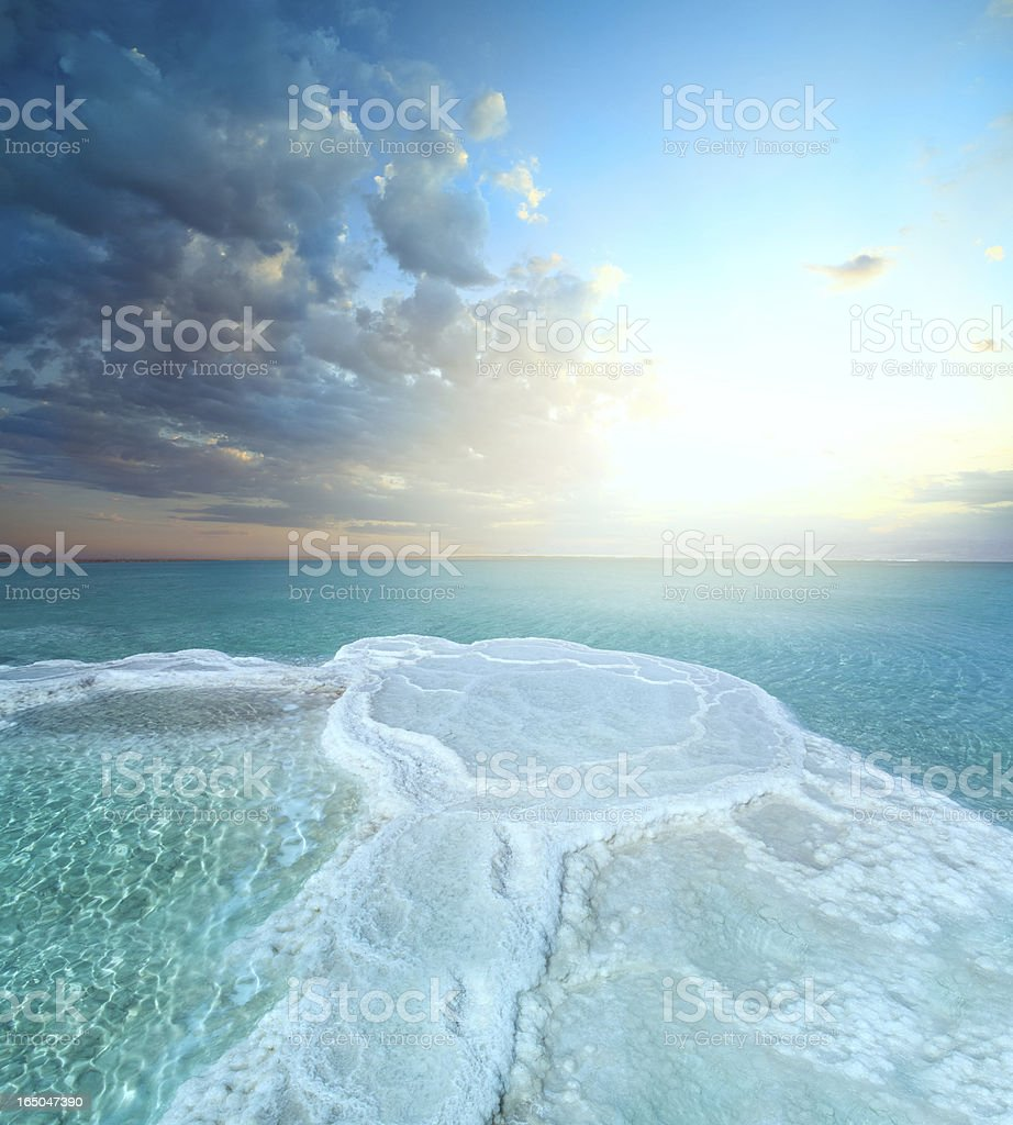 Salt field in dead sea stock photo