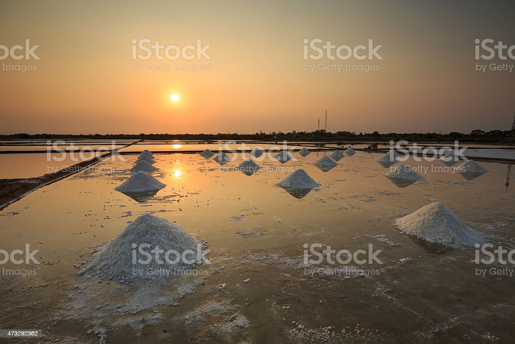 Salt field in sunset or sunrise in Can Gio, Vietnam royalty-free stock photo