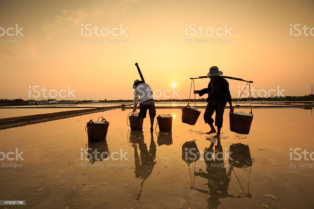 Salt field in sunset or sunrise , with  silhouette Can Gio royalty-free stock photo