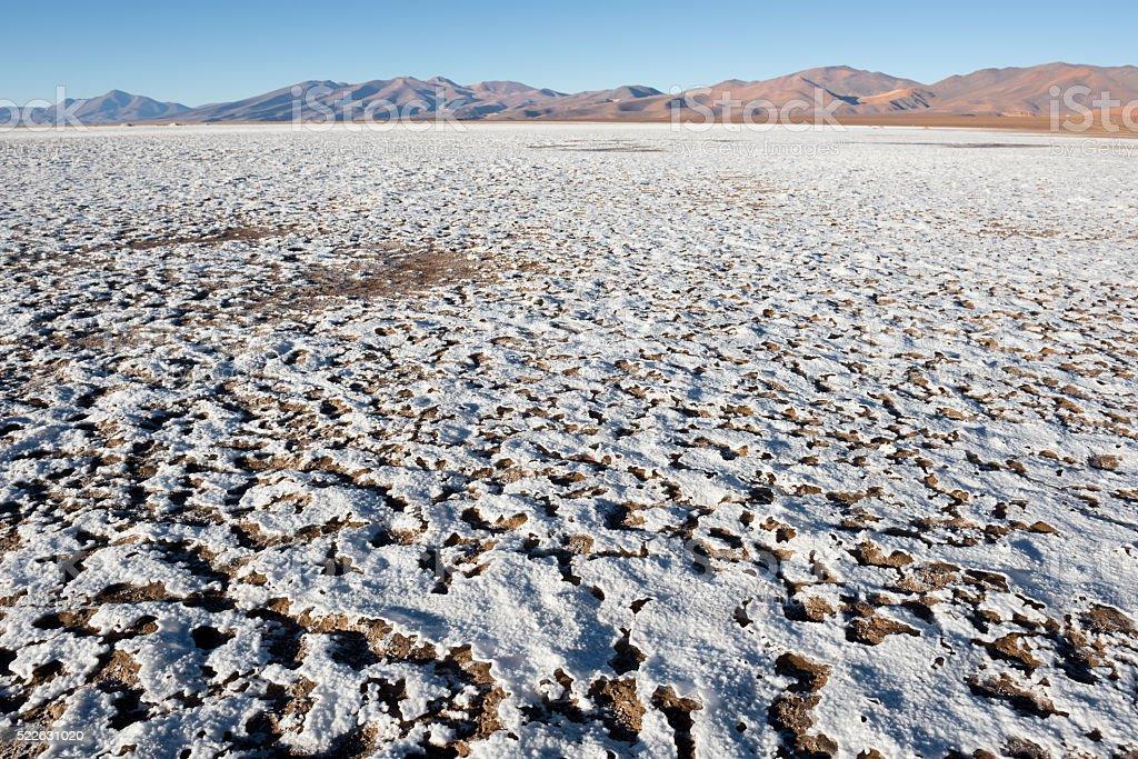 Salt flat of Maricunga, Chile stock photo