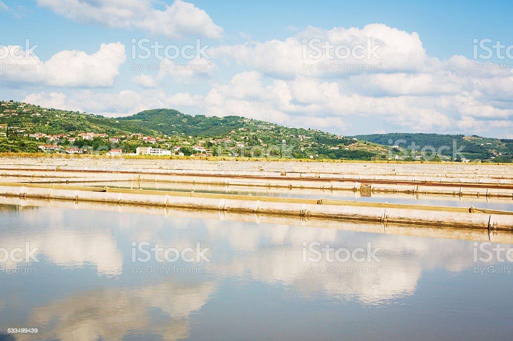 salt flats near portoroz, slovenia stock photo
