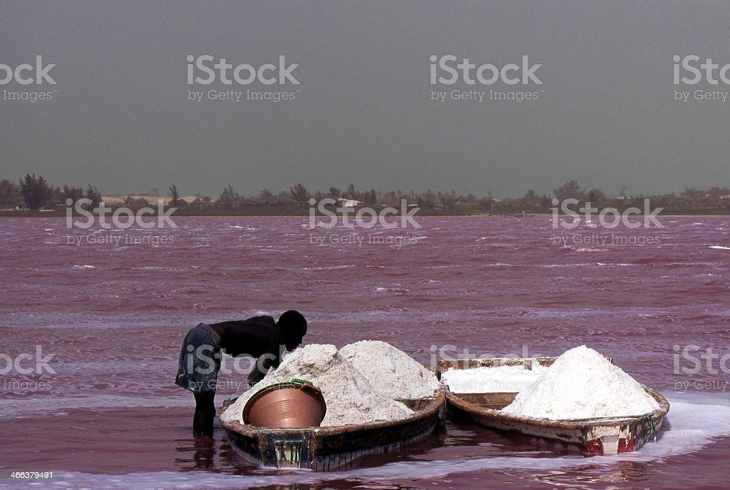 Salt gatherer stock photo