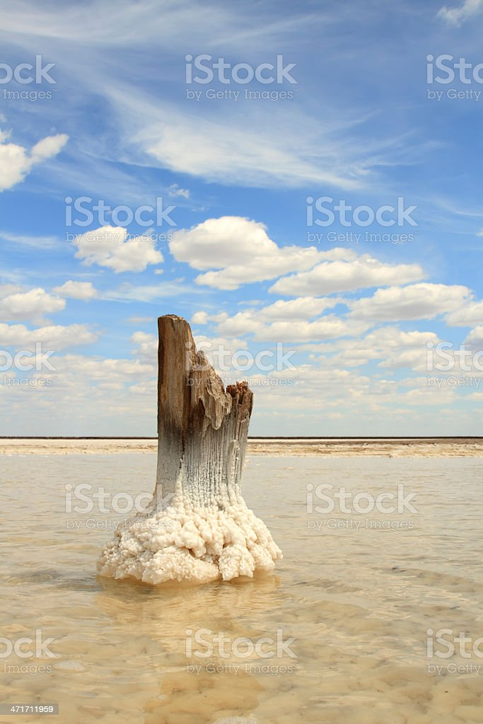 Salt Lake Baskunchak, Russia royalty-free stock photo