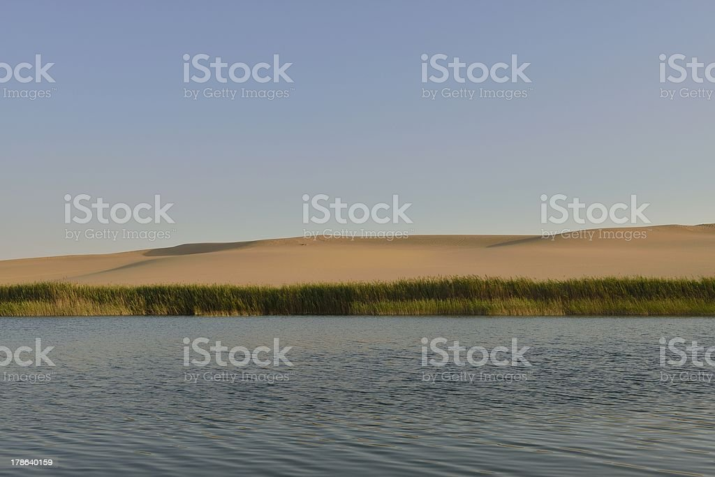 salt lake in sahara desert stock photo