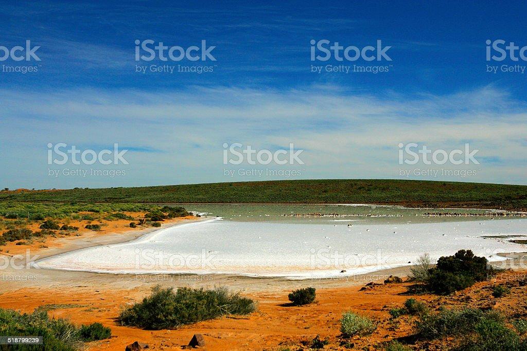 Salt Lake, South Australia, Australia royalty-free stock photo