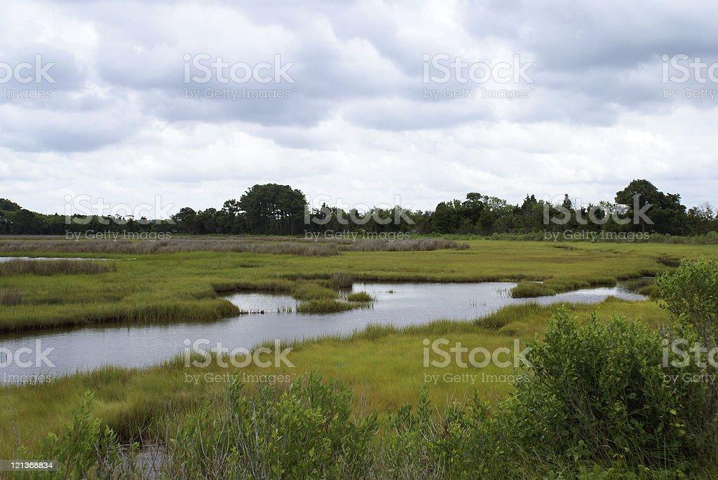 Salt Marsh and Dramatic Sky stock photo