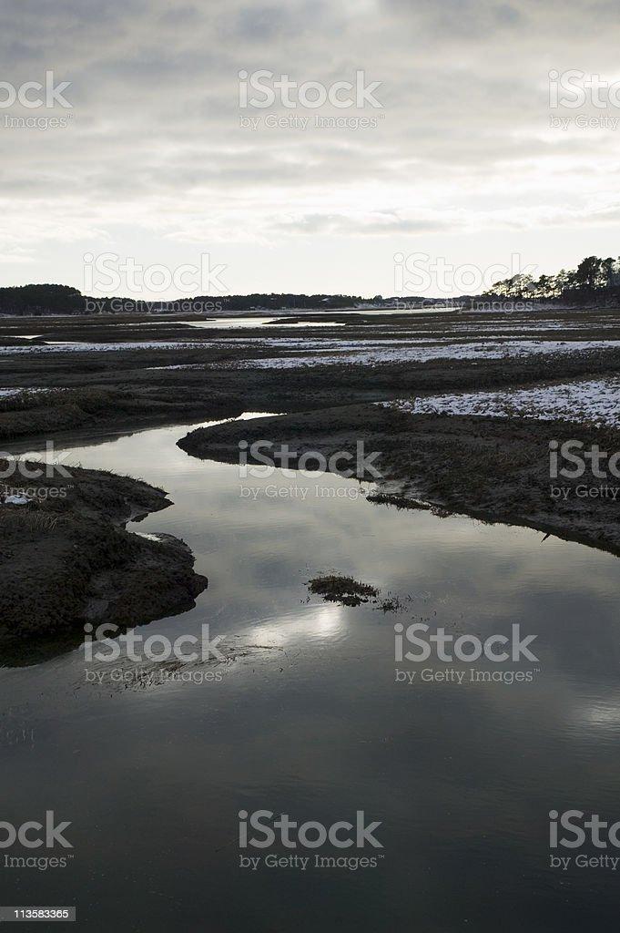 salt marsh at dusk royalty-free stock photo