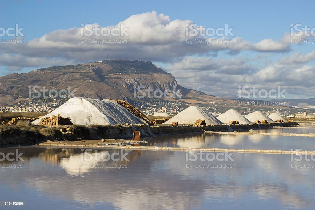 Salt marsh landscape stock photo