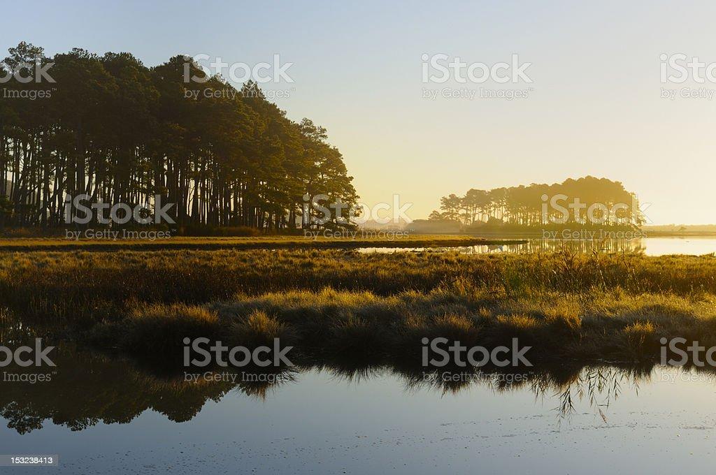 Salt Marsh with Foggy Sunrise stock photo
