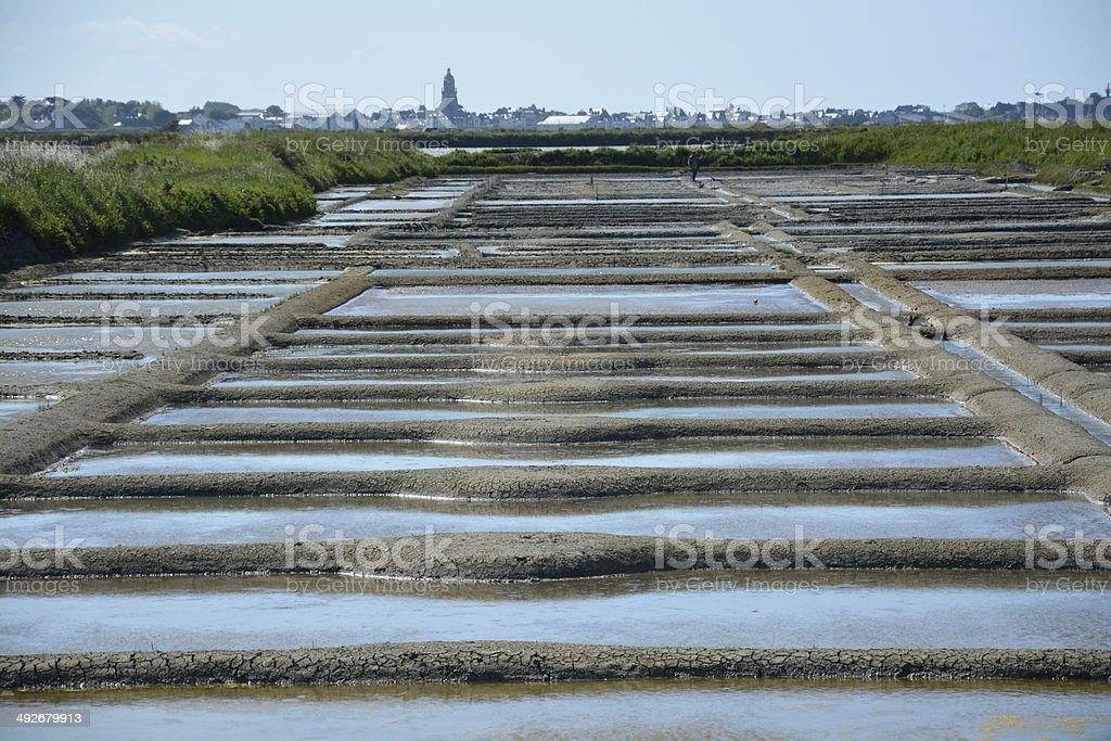 salt pan stock photo