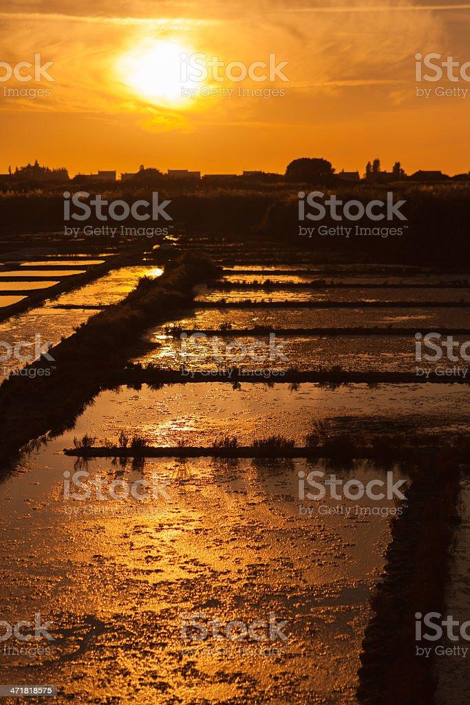 salt pans sunset stock photo
