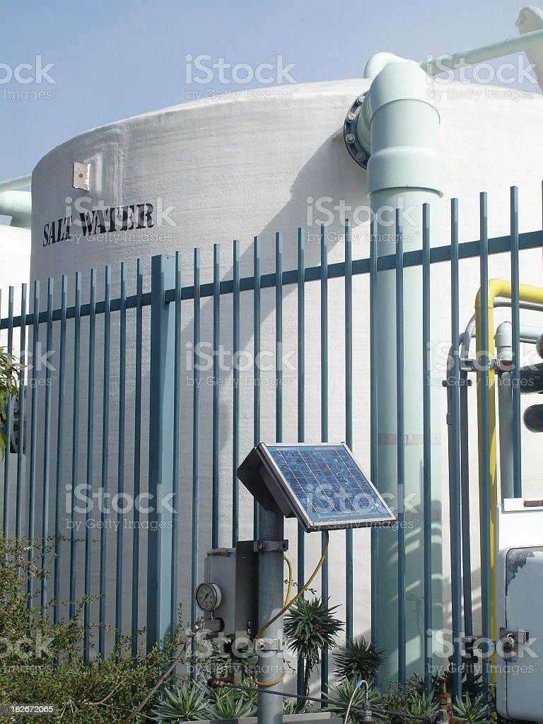 Salt Water Plant stock photo