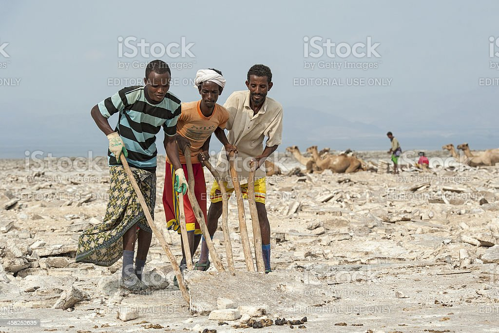 Salt workers in the Danakil Desert, Ethiopia stock photo