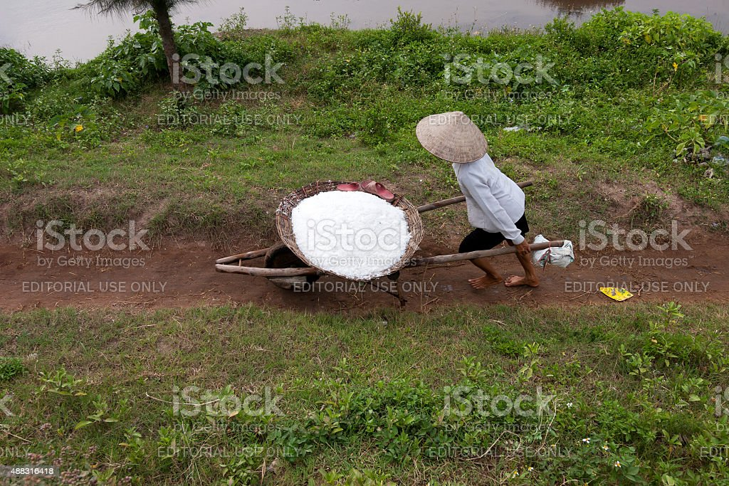 Salt workers working on their salt farm stock photo