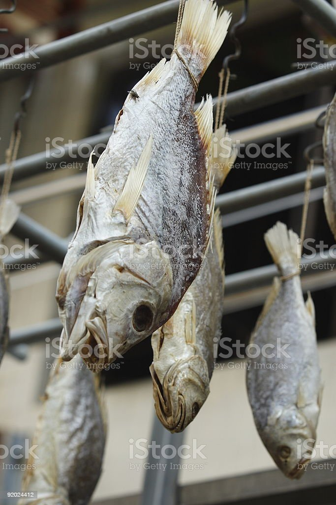 Salted Fish royalty-free stock photo