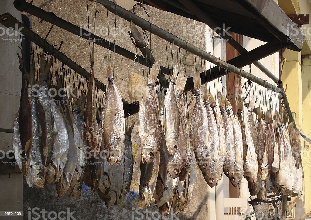 Salted fishes royalty-free stock photo