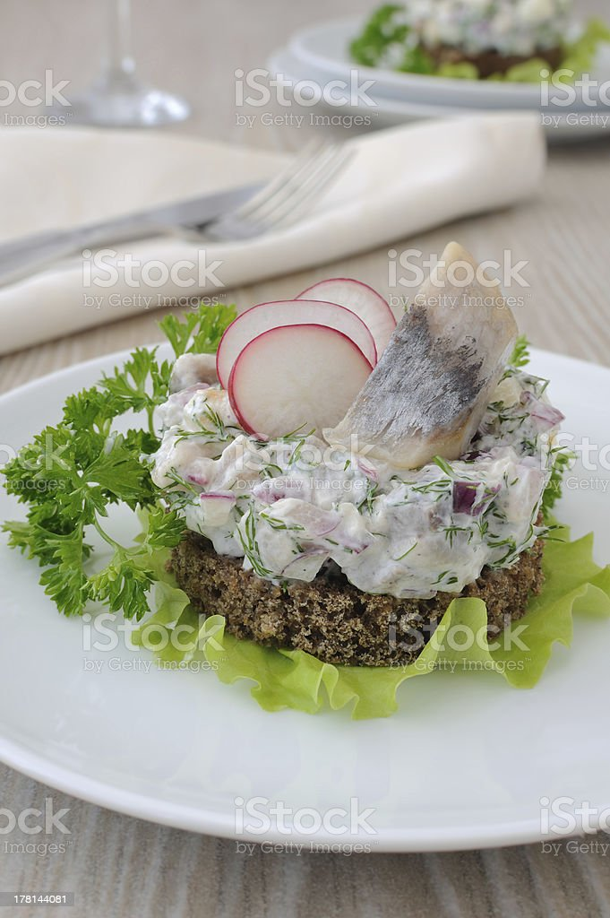 Salted herring tartare with apple and radish royalty-free stock photo