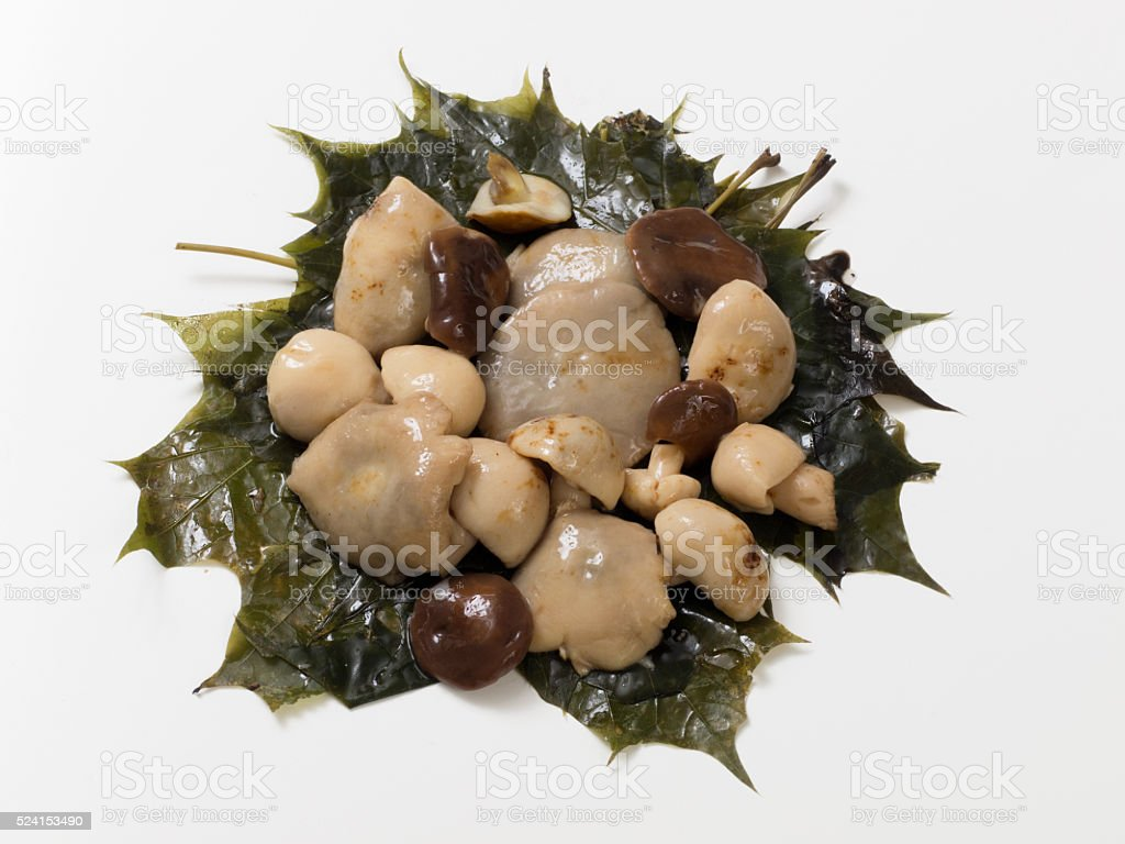 Salted wild mushrooms to maple leaves royalty-free stock photo